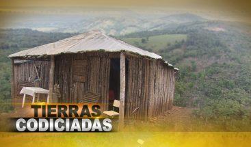 Trabajo de 800 campesinos en peligro por disputa de tierras