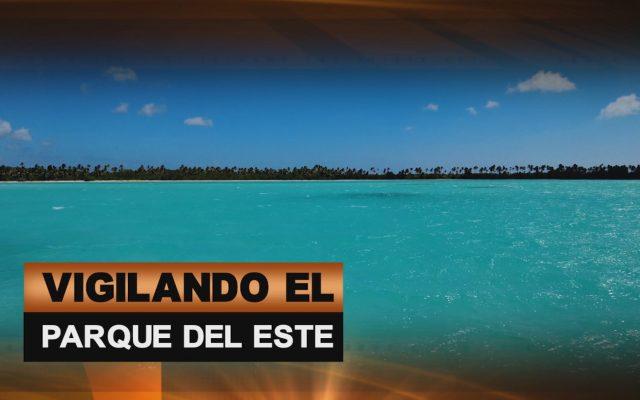 VIGILANDO EL PARQUE DEL ESTE