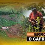 ERROR O CAPRICHO
